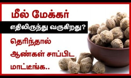 What is a meal maker made of? | Tamil Health Tips